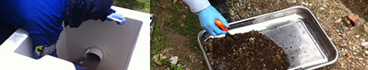 SIIEM Servicios especializados y consultoría en Gestión ambiental, Gestión del Recurso Humano, y mantenimientos físicos.